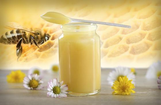 Pappa reale: il super cibo delle api regine. Questa sostanza prodotta dalle api ci mette a disposizione un plus di nutritivi. Scopri quali! http://www.drgiorgini.it/index.php/approfondimenti/pappa-reale-il-super-cibo-delle-api-regine #royaljelly #pappareale #api