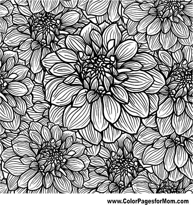 Flower Coloring Pages For Adults Printable Christmas poinsettia