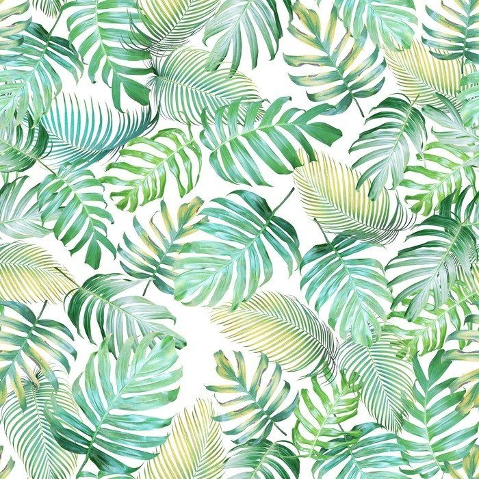 Tropical Leaves Seamless Pattern Of Monstera Philodendron And Palm Leaves In Light Green Yellow Color Tone Tropical Background Sheer Window Curtain Pixers In 2021 Tropical Background Tropical Leaves Palm Leaves Pattern