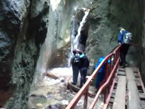YOAM TUBE-Canionul Sapte Scari din Muntii Piatra Mare