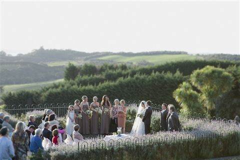 A gorgeous vineyard setting for I do's.