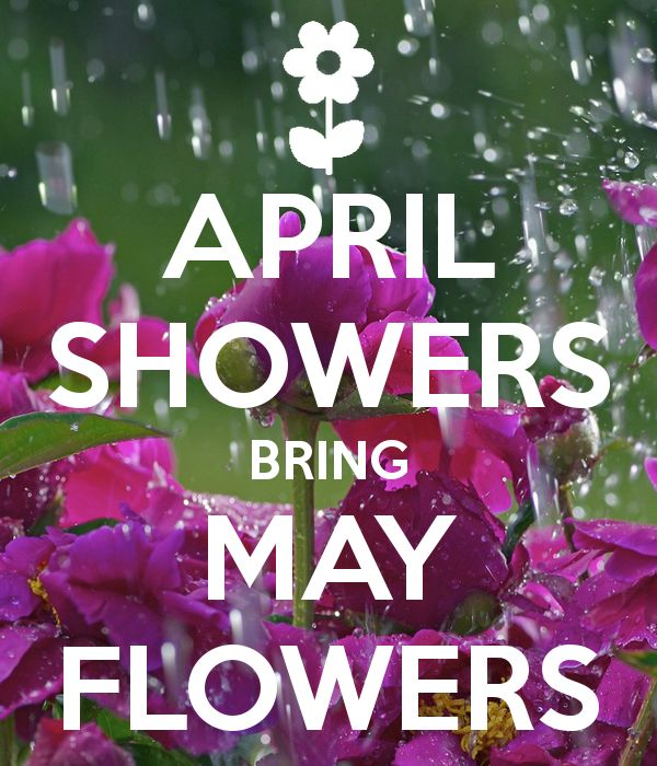 'APRIL SHOWERS BRING MAY FLOWERS' Poster