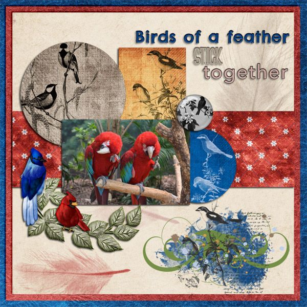 I just love the bright colors of these birds that my husband captured a photo of at the local zoo their exhibit is great looks so natural they have trees and all kinds of birds in it.  Birds of a Feather kit by by Janece Suarez   http://www.godigitalscrapbooking.com/shop/index.php?main_page=product_dnld_info&cPath=29_419&products_id=27874#prettyPhoto