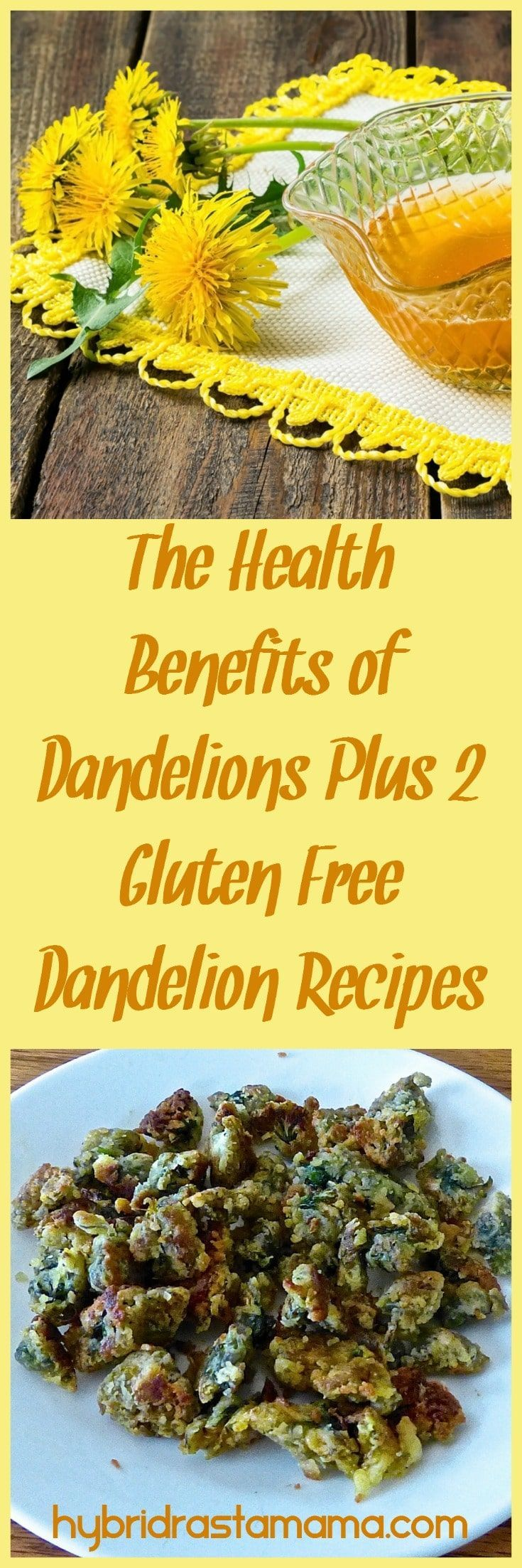 Fried Dandelion Flowers Candied Dandelion Flowers Gluten Free Recipes Recipe Gluten Free Recipes Side Dishes Dandelion Benefits Dandelion Recipes