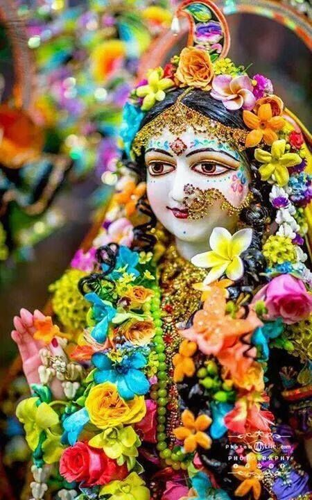 """""""O queen, please rescue this unfortunate person, drowning in an ocean of pain. Place him on the strong boat of your mercy and carry him to the wonderful realm of Your lotus feet."""" -Srila Raghunatha Das Goswami"""