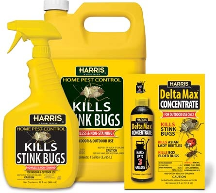 Kill stink bugs both indoors and outdoors with Harris Stink Bug Killer, available at many hardware, grocery and home improvement stores