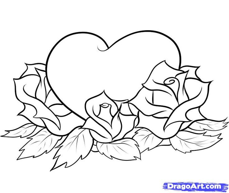 Love Roses And Hearts Drawings