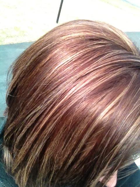 Dark Burgundy Hair Color With Highlights Dark Hair Colors