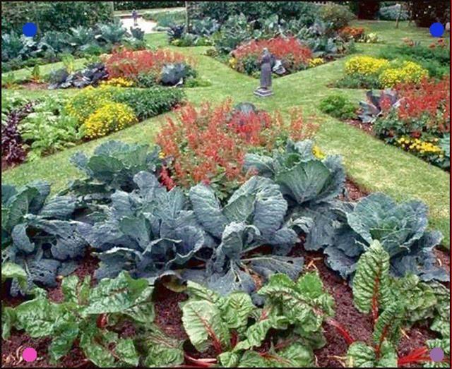 Edible Garden Landscape Ideas Eatable Garden Landscaping Also Called Front Yard Gardening Edible Landscaping G In 2020 Edible Garden Plants Vegetable Garden Design