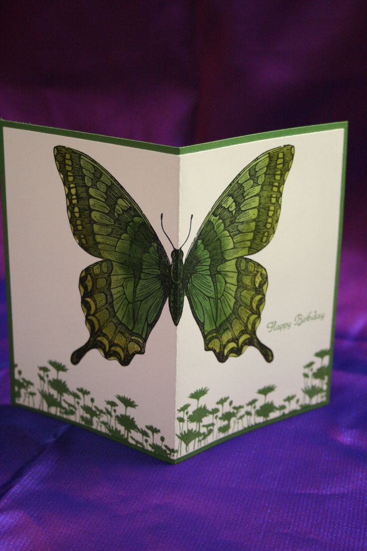 """By Amanda Dulihanty. Stamp """"Swallowtail"""" (Stampin' Up) in black ink in center of 8"""" x 5"""" piece of white cardstock. Stamp """"Upsy Daisy"""" (Stampin' Up) repeatedly in green ink at bottom. Color butterfly with various shades of green markers or water brush and ink. Stamp sentiment in green. In landscape orientation, score at 4"""" and fold with butterfly out. Attach to green card base. [Can make in browns, blues, oranges, etc.]"""