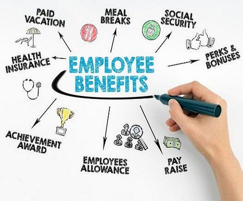 How Total Compensation and Total Rewards Affect the Productivity of Employees