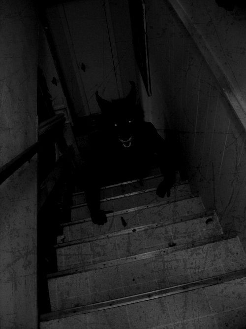 Creepy Basement Stairs Dark Basement Stairs The Staircase And
