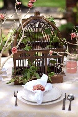 Decorating With Birdcages 12 Creative Ideas For Everyday