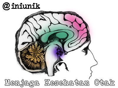 7 Tips Menjaga Kesehatan Otak - @INIUNIK - Otak kita memiliki 2 bagian yaitu belahan otak kanan dan belahan otak kiri. Otak kiri berperan dalam kemampuan baca, tulis, hitung dan fungsi kognitif lainnya. Sementara otak kanan sebagai bentuk berpikir paralel, kreatif, intuitif, dan imajnatif.