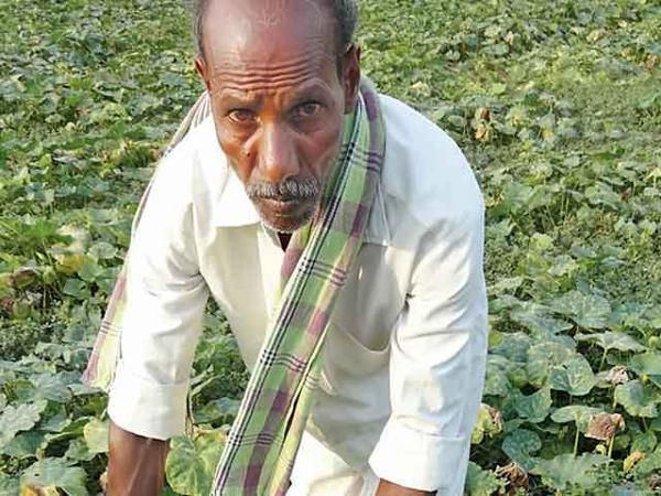 Telangana: Unseasonal rains coupled with unreliable power supply have driven farmers to despair - The Economic Times