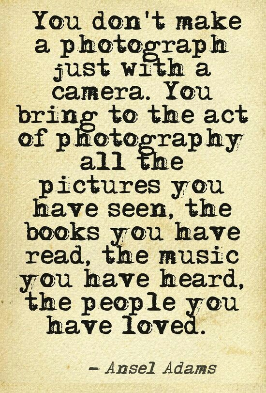 15 Best Photography Quotes Images On Pinterest | Photography Ideas