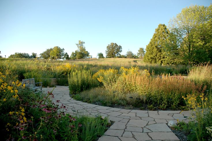 1000 images about prairie landscape design on pinterest for Prairie style garden design