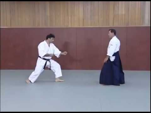 Complete All In One Aikido Tutorial 2017 Youtube Stuff