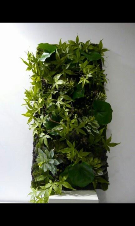 Les 17 meilleures images propos de decoration v g tale for Mur vegetal suspendu