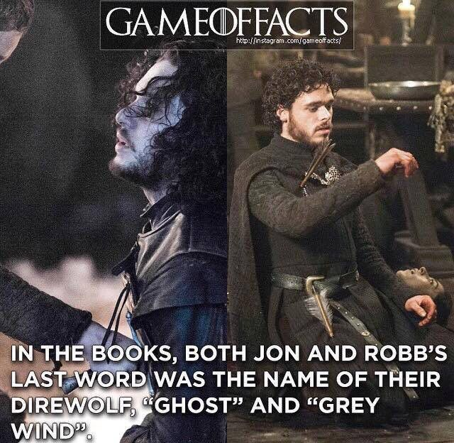 "In the books, both Jon and Robb's last word was the name of their direwolf, ""Ghost"" and ""Grey Wind"""
