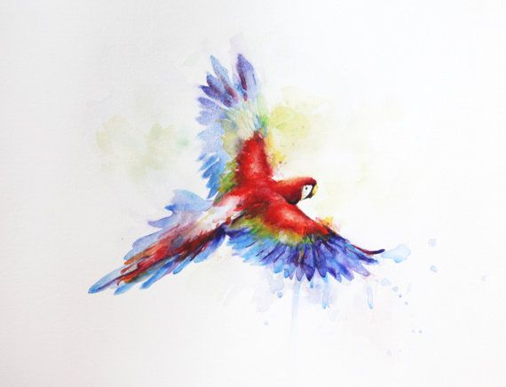 https://www.etsy.com/fr/listing/286225815/flying-parrot-boba-art-watercolor?ref=shop_home_active_1