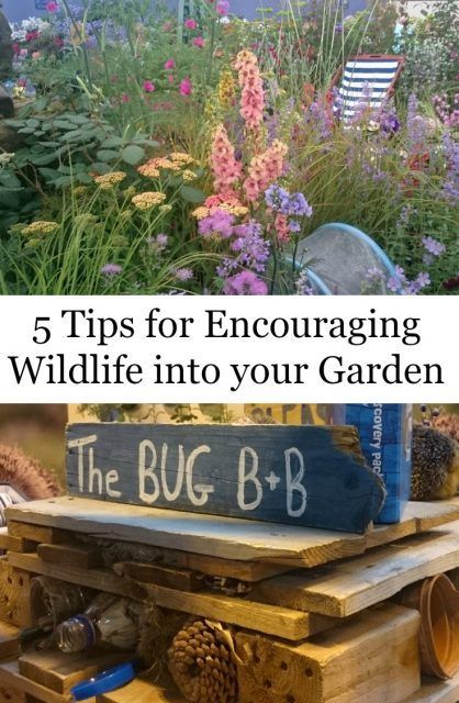 The Ultimate Pinterest Party, Week 104! 5 Tips for Encouraging Wildlife into Your Garden