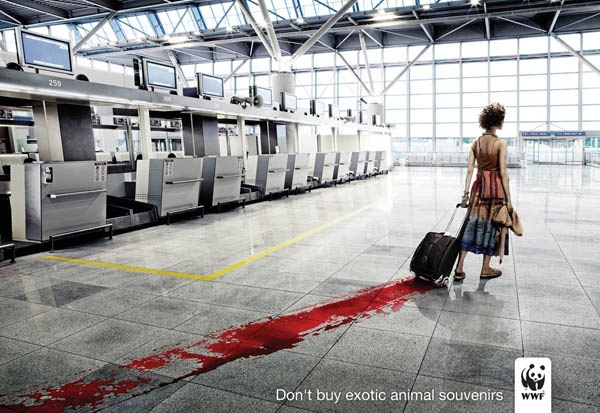 Spargimento di sangue (innocente)