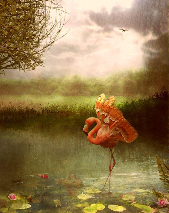 """Stranger things have happened""...Copyright© Jena DellaGrottaglia-Maldonado 2012"