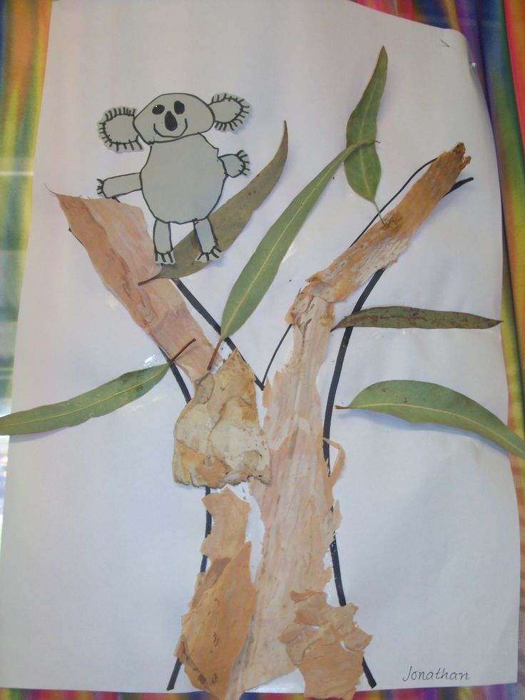 Have the children draw a step by step koala then use real bark and leaves on the tree.