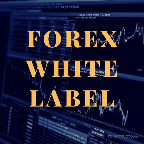 Learn What Our Forex White Label Solutions Cost