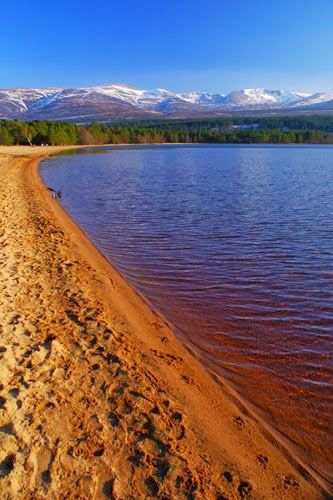 One of my favourite places in the world; Loch Morlich Beach,Scotland