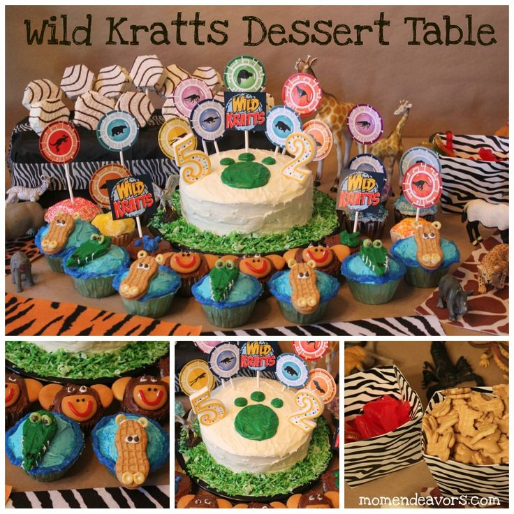 Wild Kratts birthday party, complete with Creature Power Suits and activities!