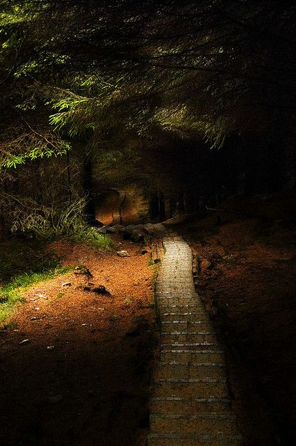 "Wicklow Pass in Glendalough, Ireland     ""Still round the corner there may wait  A new road or a secret gate  And though I oft have passed them by  A day will come at last when I shall take The hidden paths that run  West of the moon, east of the sun.""    ~J.R.R. Tolkien"