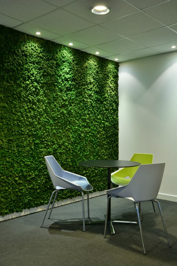 best 20 moss wall ideas on pinterest moss wall art moss art and wall gardens. Black Bedroom Furniture Sets. Home Design Ideas