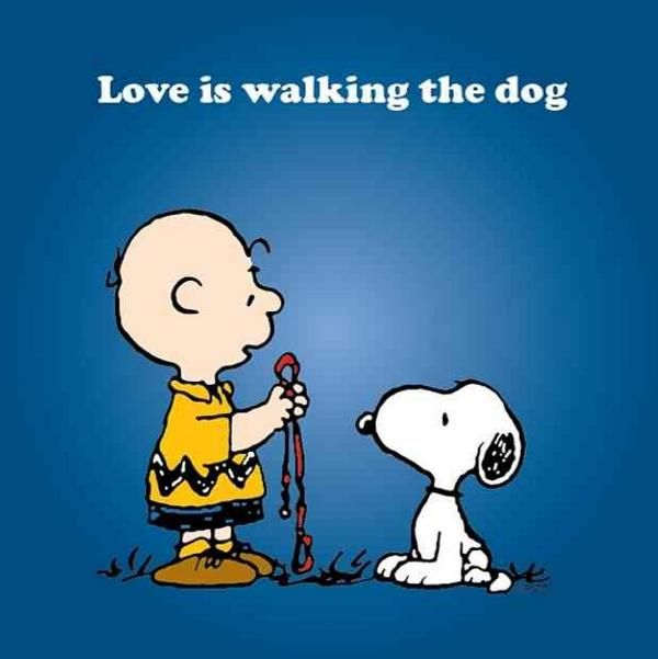 'Love is...Walking the Dog', Charlie Brown and Snoopy.