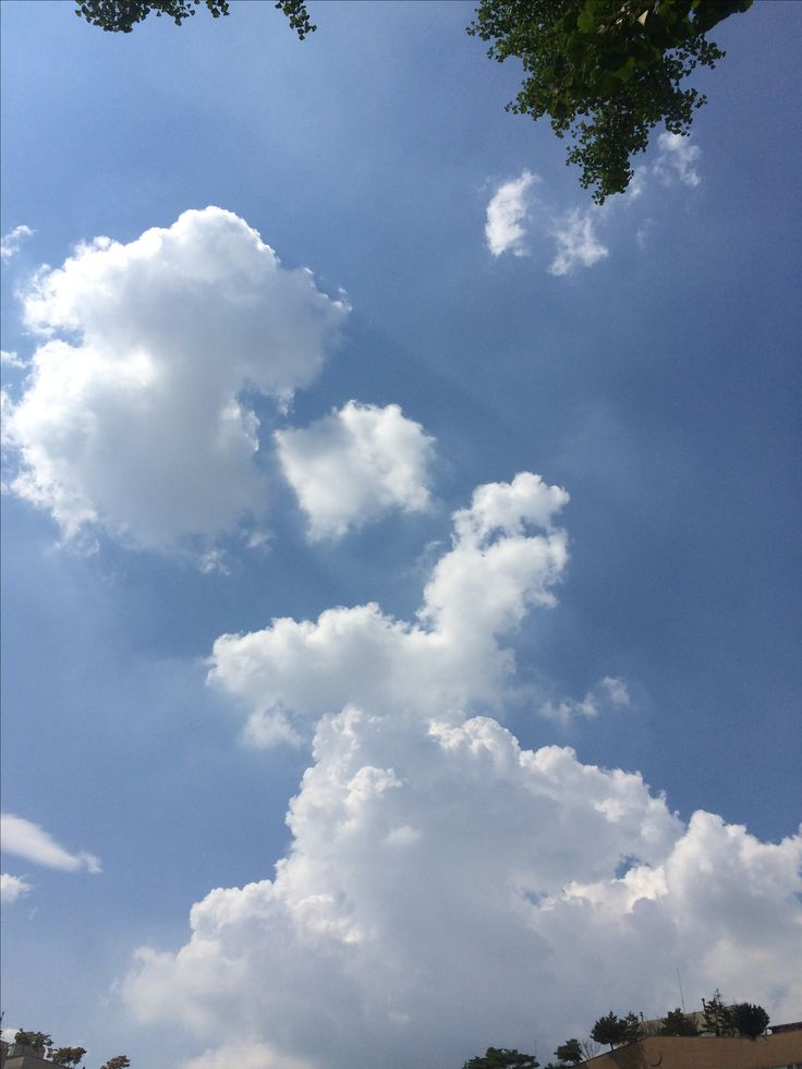 2017년 8월 5일의 하늘 #sky #cloud