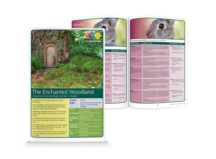 FREE DOWNLOAD. The Enchanted Woodland. An Imaginative Learning Project for Year 1 Children in ENGLISH schools. | Cornerstones Education