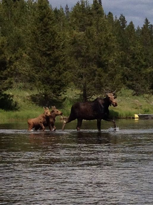 Friends you meet on a float down Big Springs in Island Park, ID