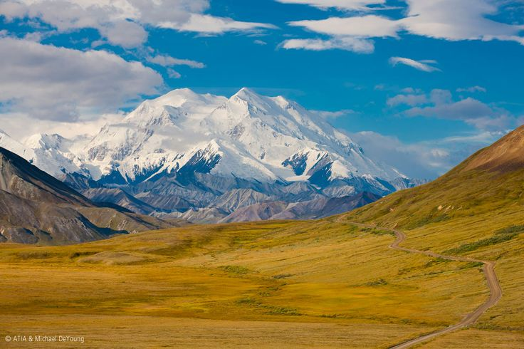 Denali National Park in Alaska boasts spectacular mountain peaks and wildlife - and it's is home to North America's highest peak, Mt McKinley #Denali #Alaska