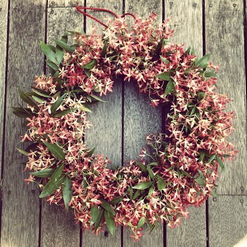 Australian Christmas Bush wreath by Flora Folk. If only my Xmas bush was still flowering at Xmas!!