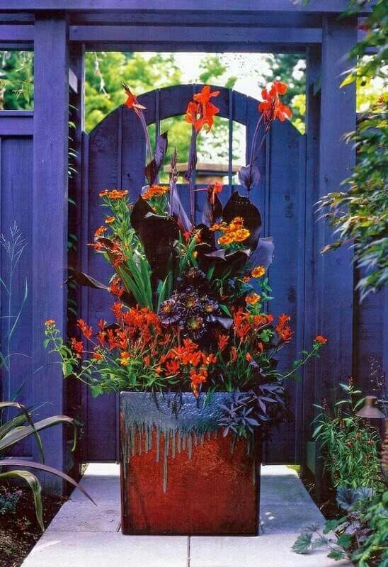 Vibrant gate and planter