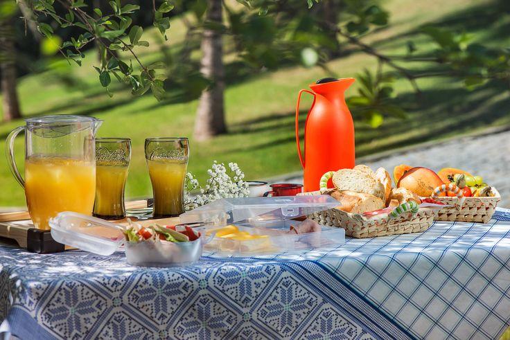 Dica: se possível, deixe sempre a mesa posicionada em um lugarzinho com sombra pra preservar por mais tempo a temperatura das bebidas e dos frios! #piquenique #dicas #mesa #decoração #lanche