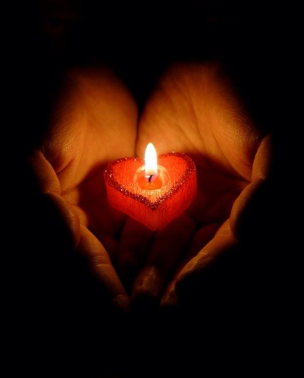 For WANDY and all animals killed today by human failure and malice - I´m so very sorry sweethearts - Rest in Peace & 51 best Candle Light images on Pinterest | Candles Lighting and ... azcodes.com
