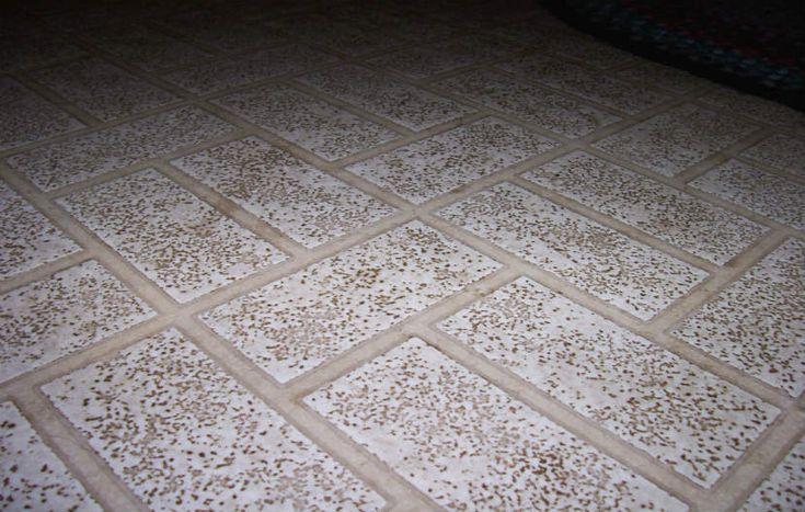 Quel est le prix du lino au m2 ? : http://www.travauxbricolage.fr/travaux-interieurs/revetements-sol/prix-pose-lino-m2/
