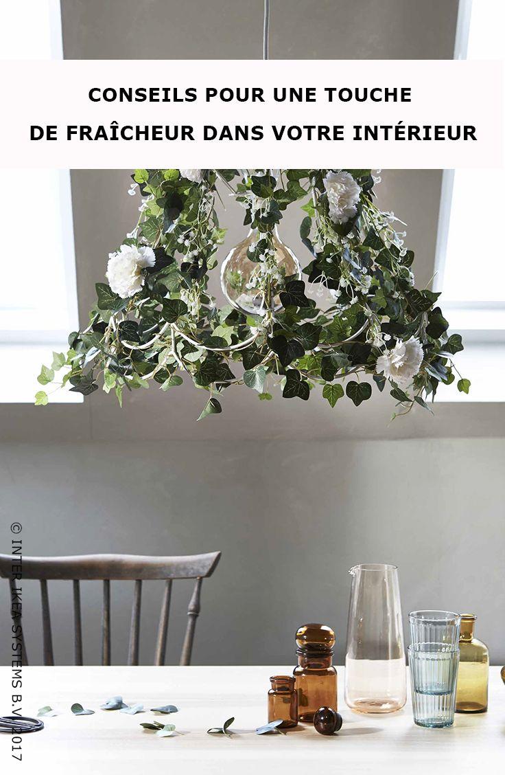 Les 25 meilleures id es de la cat gorie plantes for Plante pour chambre a coucher