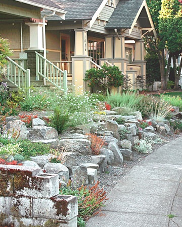 1000+ images about No Mow Front Yard on Pinterest ... on No Mow Backyard Ideas id=83365