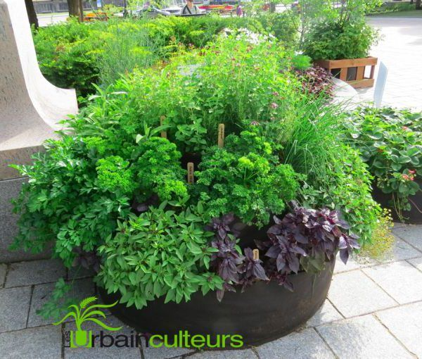 """Une spirale de fines herbes en Smart Pots de format """"Jardin instantané"""" / Herb spiral in Big Bag Beds (Smart Pots)"""
