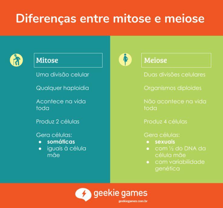 Os dois processos são muito parecidos, e as primeiras fases da meiose são idênticas às da mitose. As últimas fases da meiose são uma segunda divisão celular (praticamente uma segunda mitose).