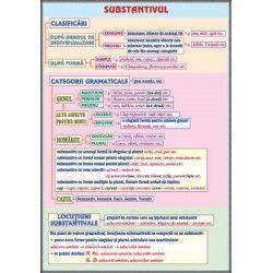 Substantivul / Cazurile substantivului