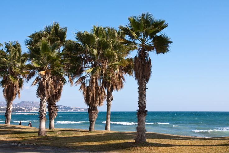 #Málaga #beach #LaMalagueta/ All places of interest you'll find here: http://www.amazon.co.uk/M%C3%A1laga-Capital-Coast-Brigitte-Hilbrecht/dp/1517300533/ref=sr_1_1?s=books&ie=UTF8&qid=1456574193&sr=1-1&keywords=malaga
